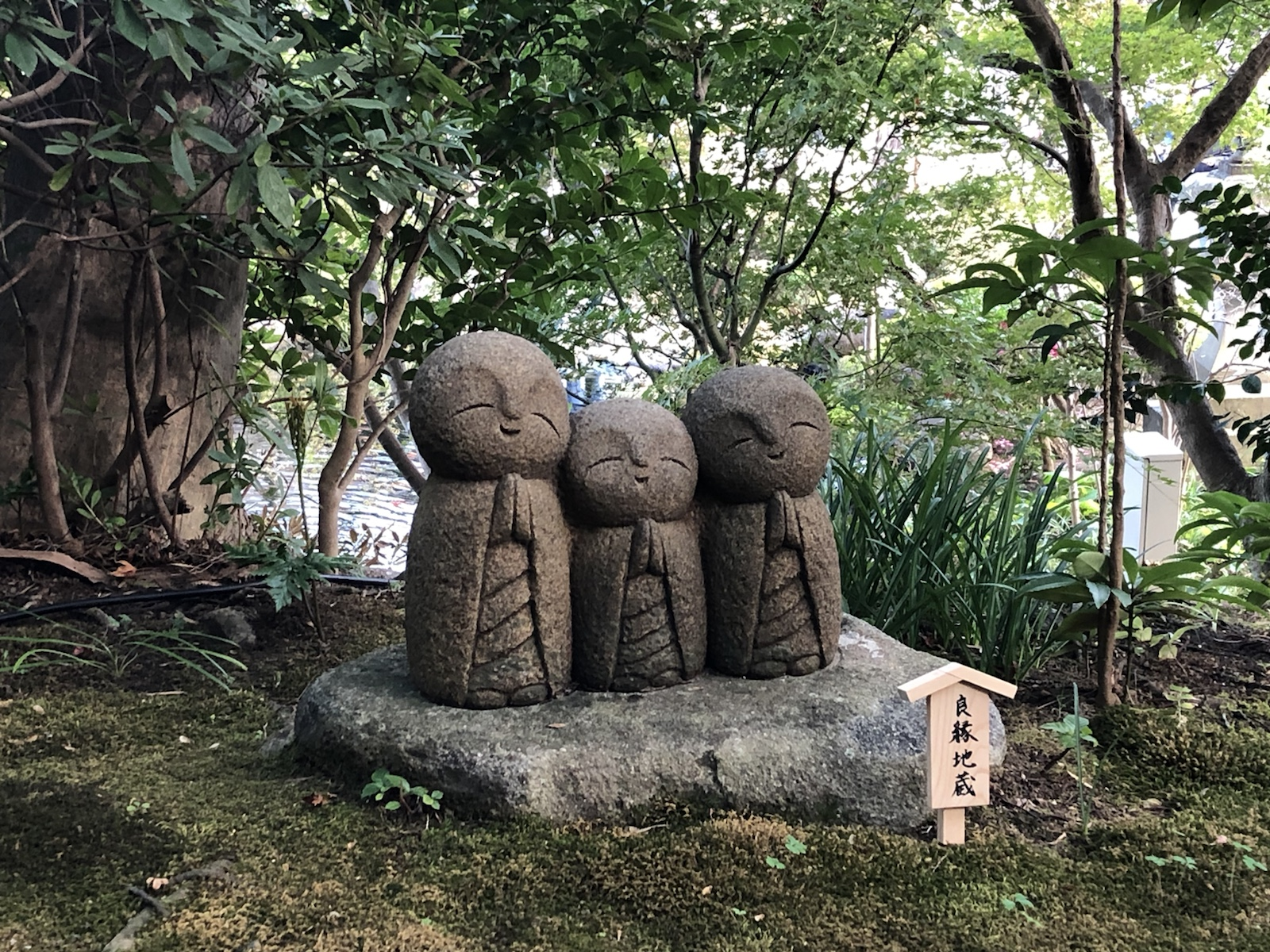 鎌倉七福神巡り「長谷寺」 由比ヶ浜を一望できる鎌倉有数の古刹